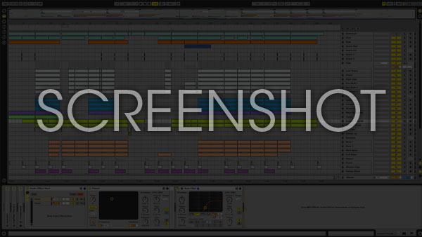 Ableton Project Screenshot Image